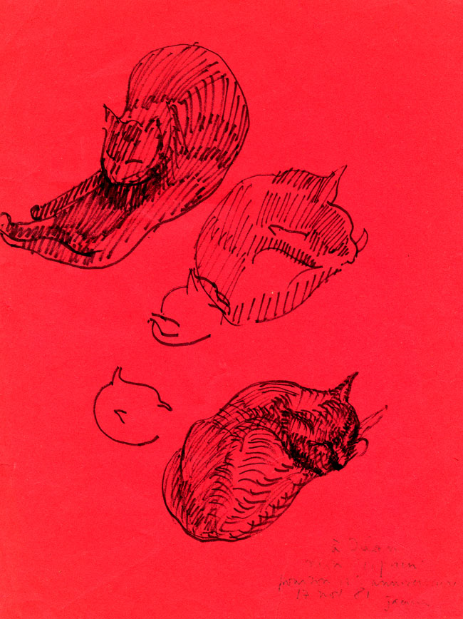 Cat-on-Red-Paper-by-Our-Jacques